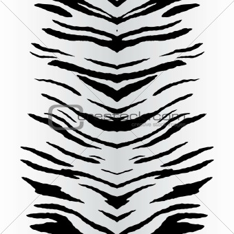 of a zebra striped pattern