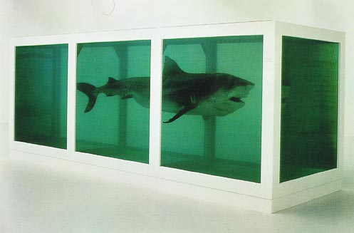 Damien Hirst Shark
