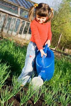 Little girl is watering on the vegetable garden in spring