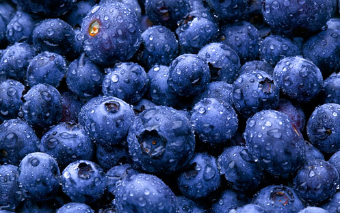 Image: Wet Blueberries